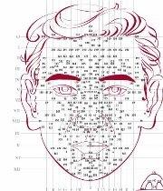 Comme pour la réflexologie plantaire où le corps humain se projette sur les pieds, le Dien Chan offre des projections sur le visage : une cartographie précise de points fixes.