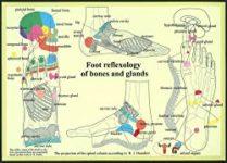 poster de réflexologie plantaire en anglais