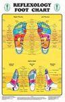 Carte plastifiée de réflexologie plantaire en anglais