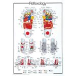 Poster de réflexologie pieds et mains en anglais